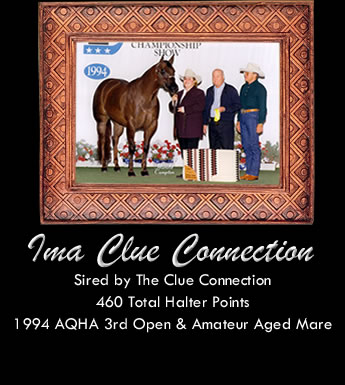 Ima Clue Connection