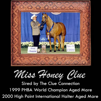 Miss Honey Clue